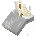 Christmas Home Fragrance Pack